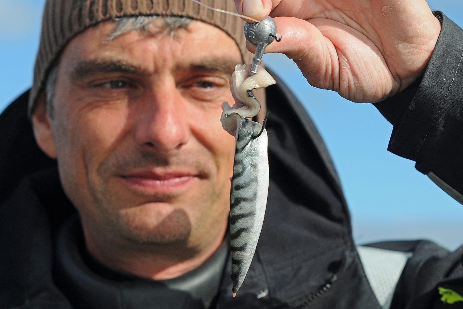 Köder zum angeln vor Hitra