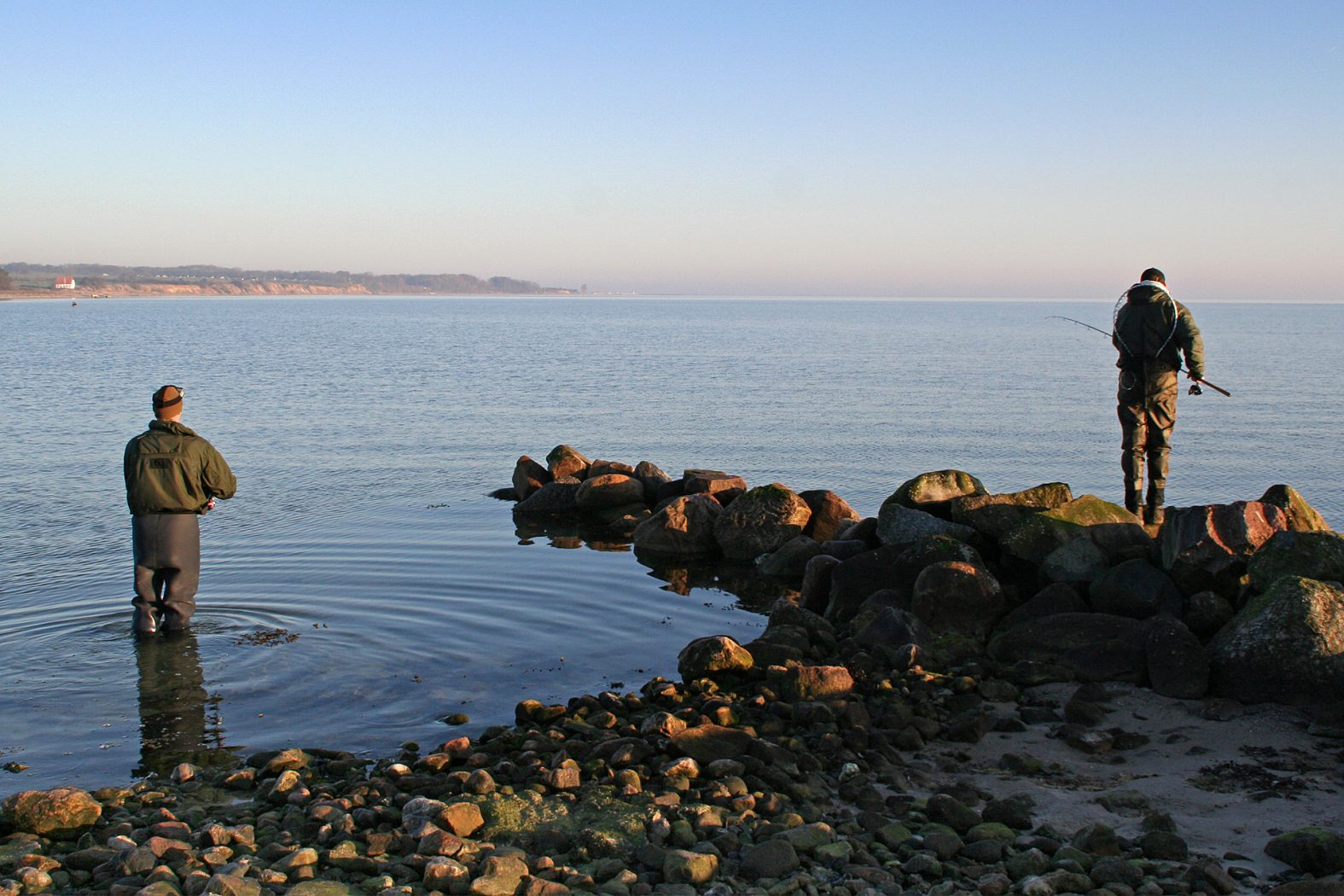 Meerforellen Angeln auf Als in Dänemark