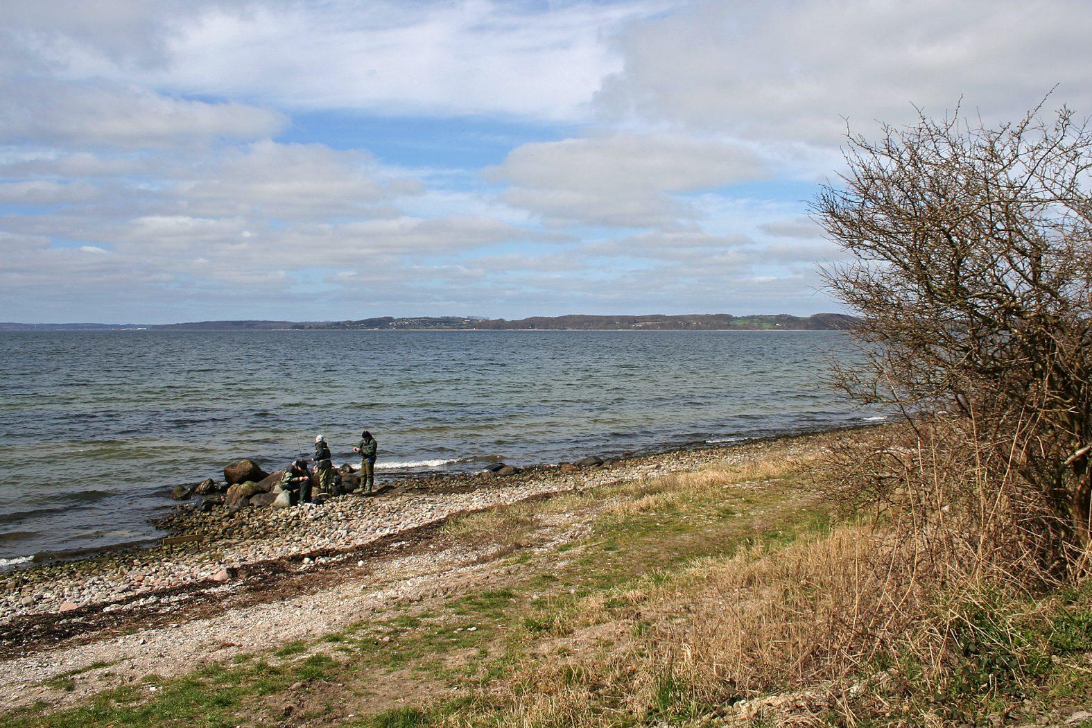Angeln am Aabenraa Fjord bei Varnæshage