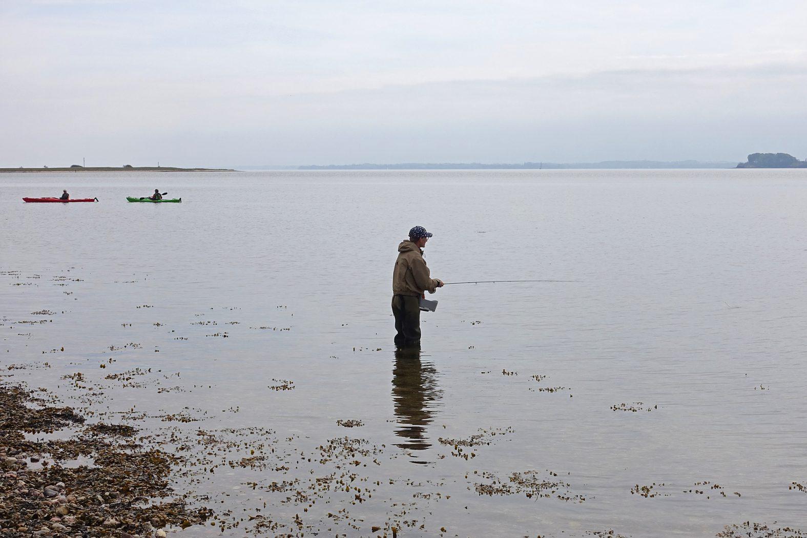 Meerforellenangeln auf der Insel Barsø in Dänemark