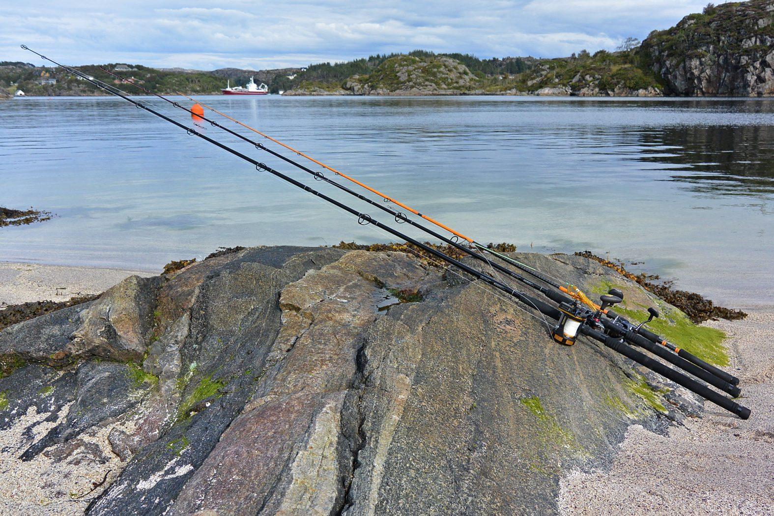 Welche Rute und Rolle zum Angeln in Norwegen