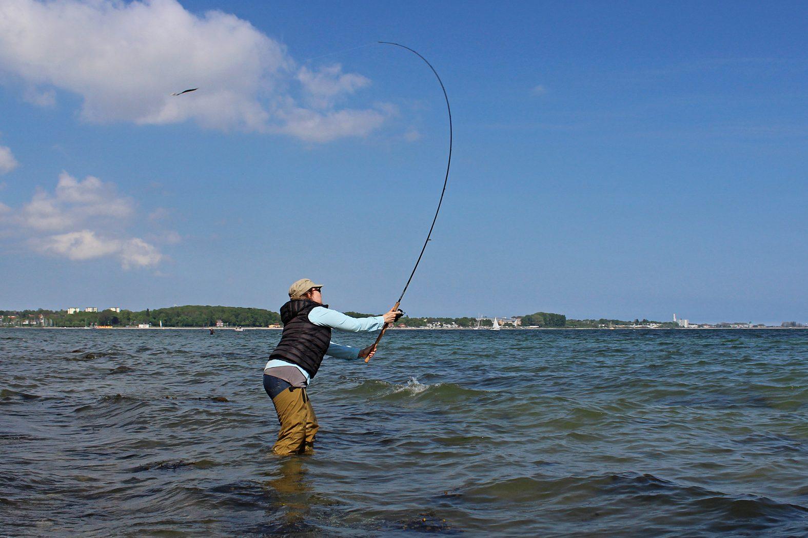 Hornhecht angeln an der Ostsee