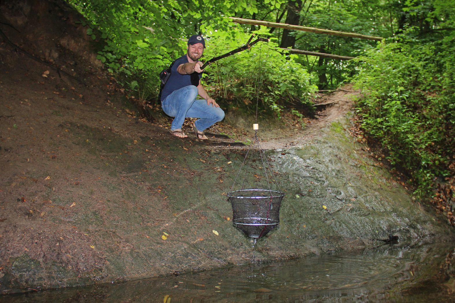 Flusskrebse mit einem Senknetz fangen