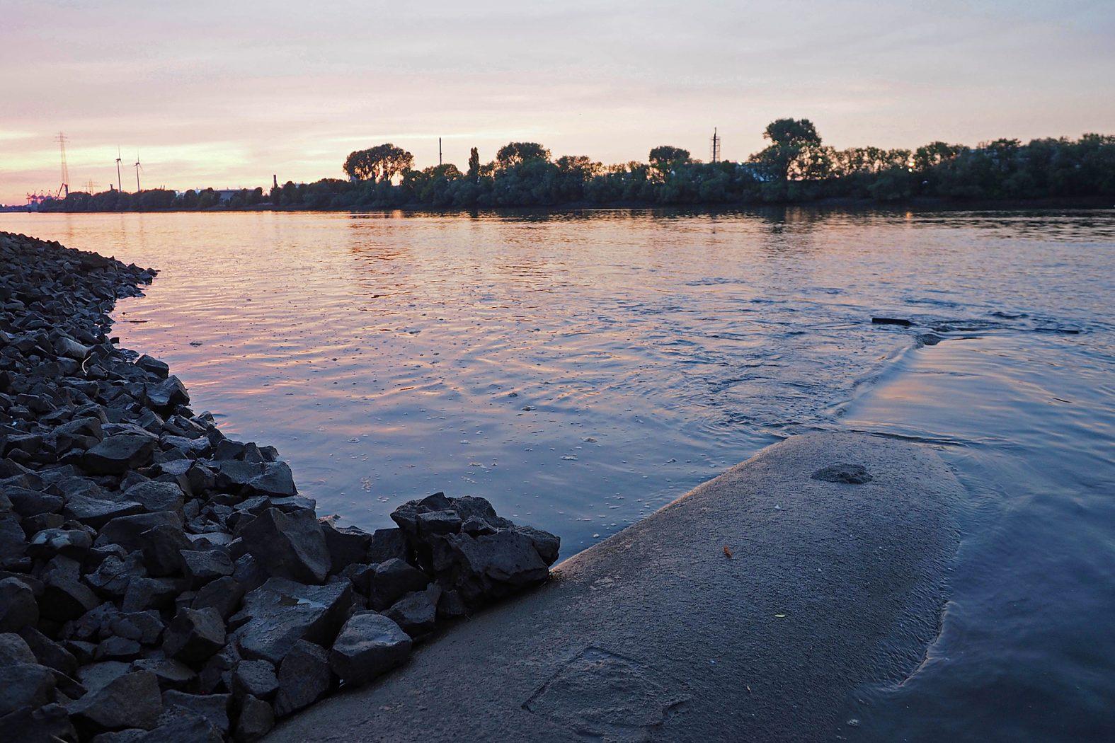Zander Standorte im Fluss