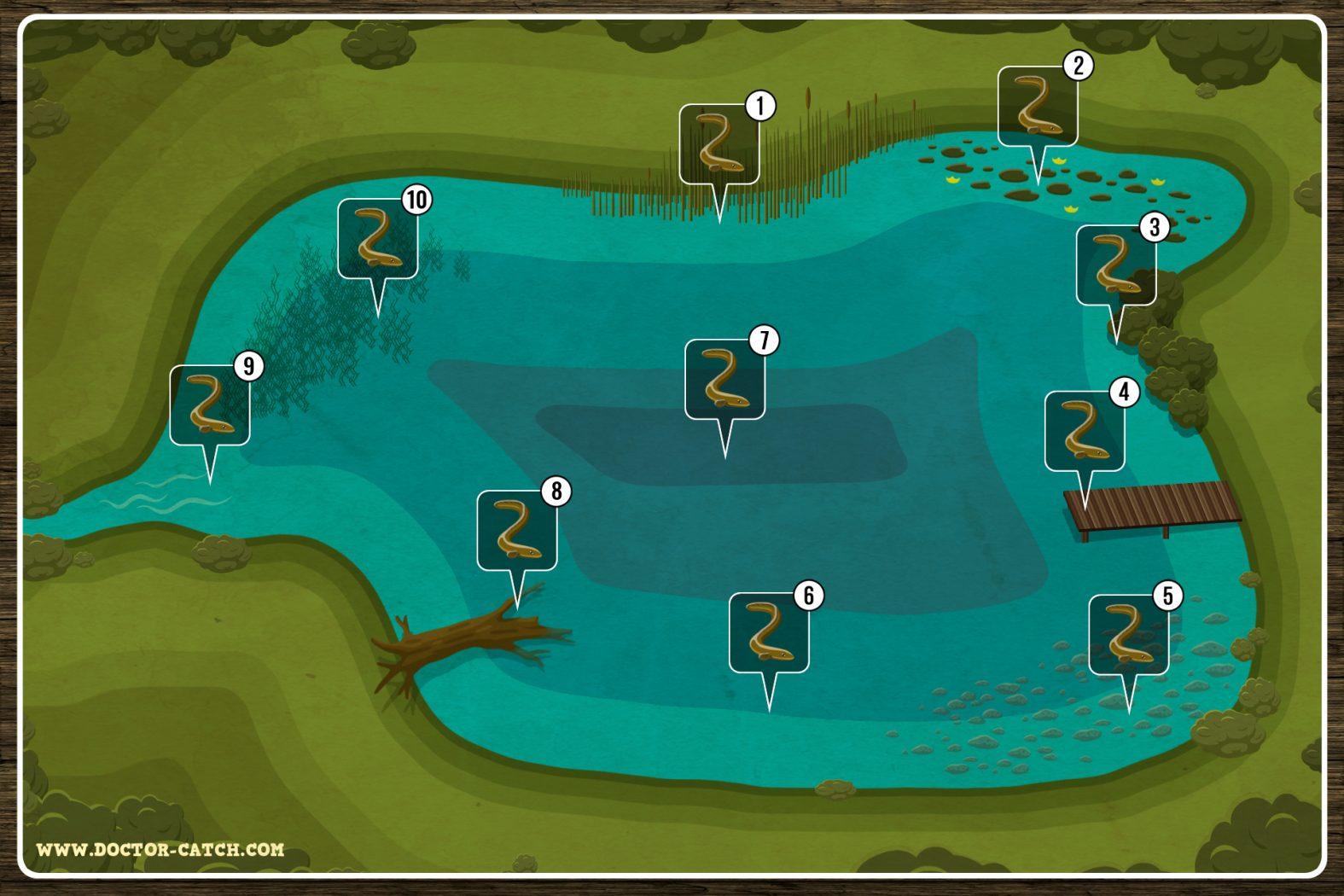 Wo auf Aale angeln?