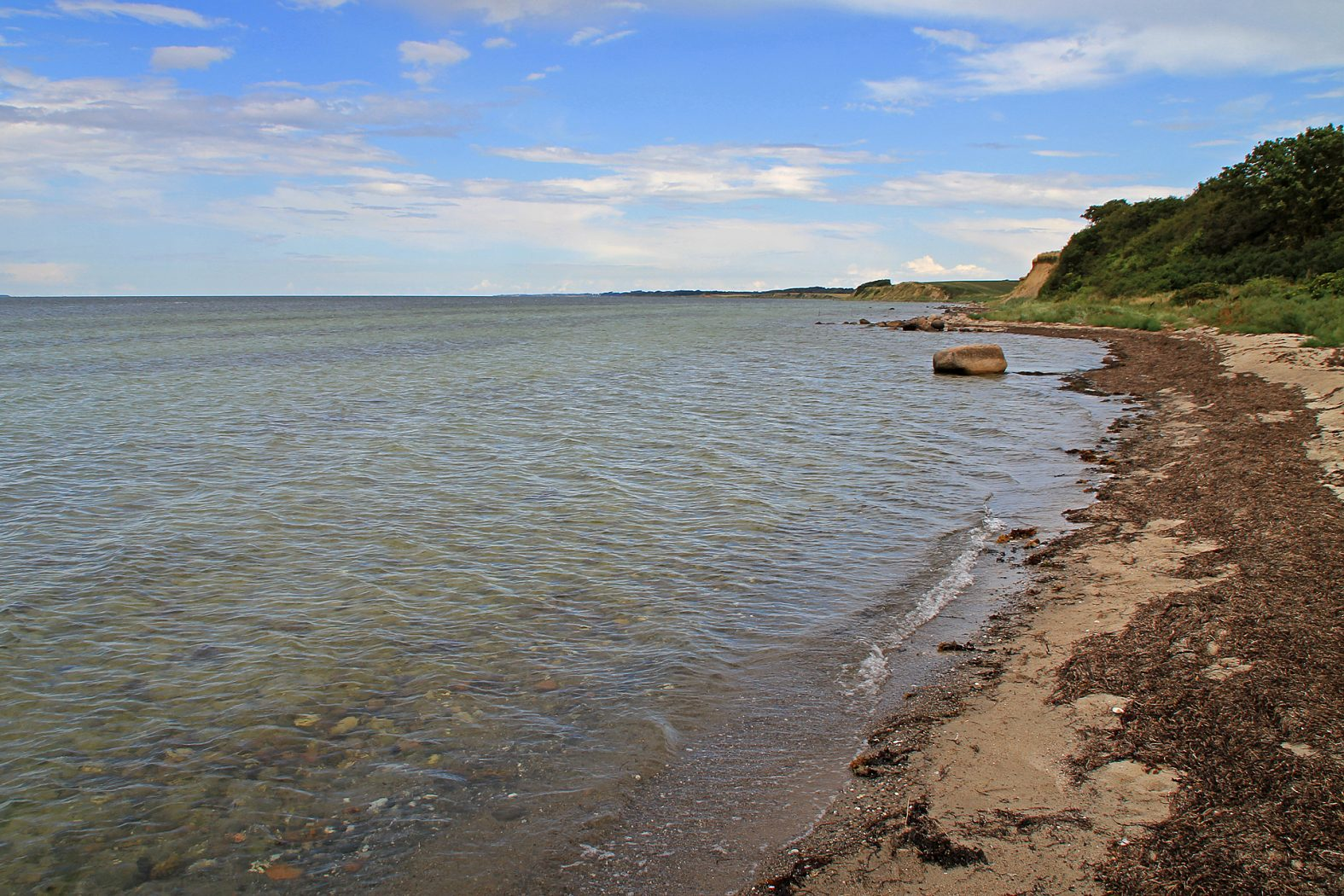 Meerforellenangeln an der Ostküste von Langeland