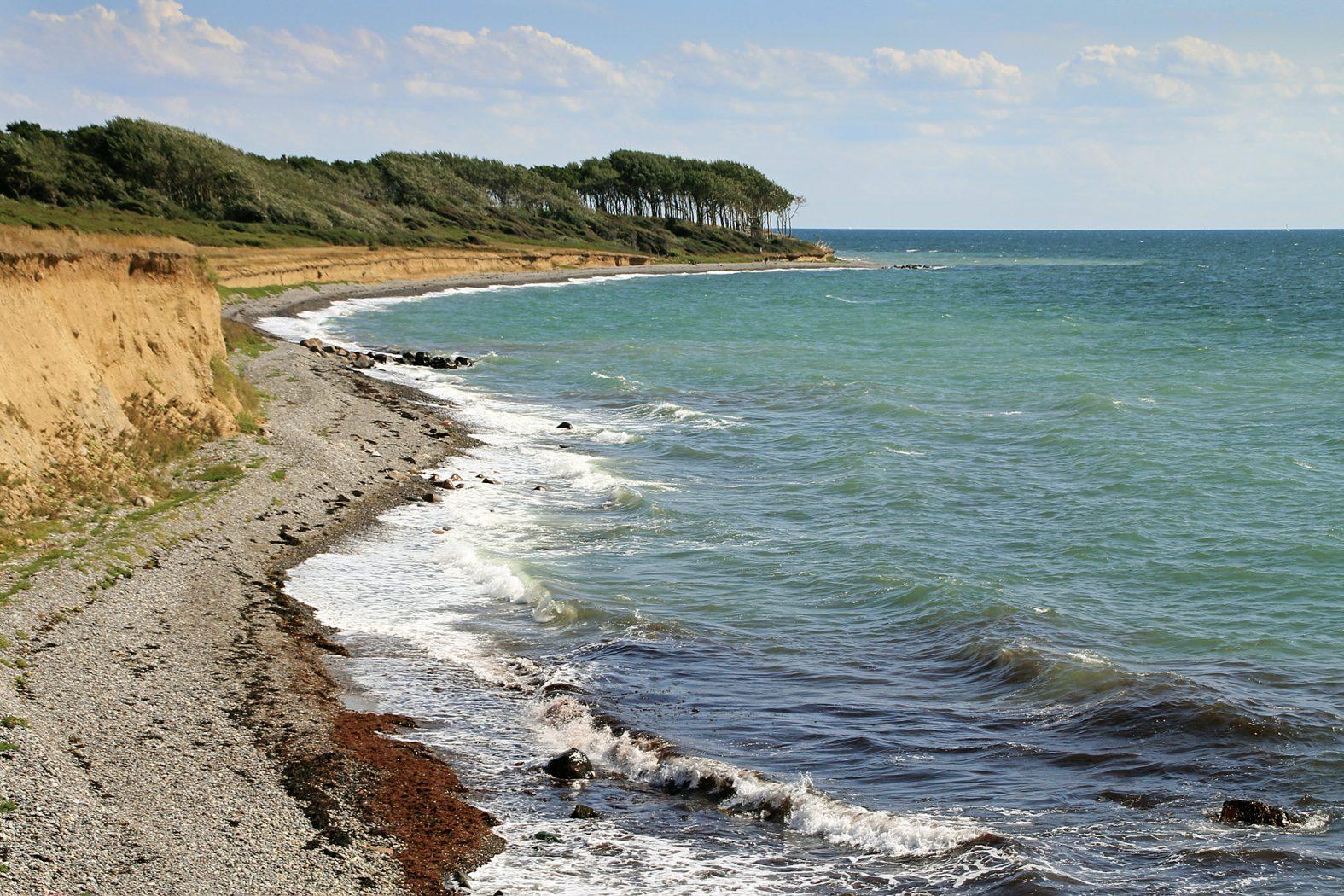 Meerforellenangeln auf Langeland bei Gulstavklint