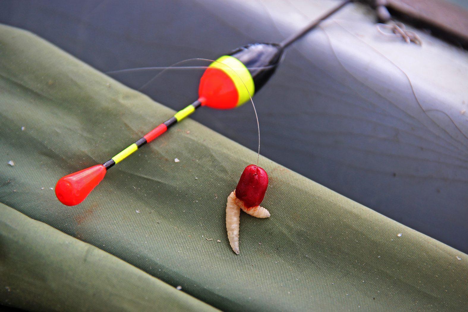 Angeln auf Weißfisch mit Teig und Maden
