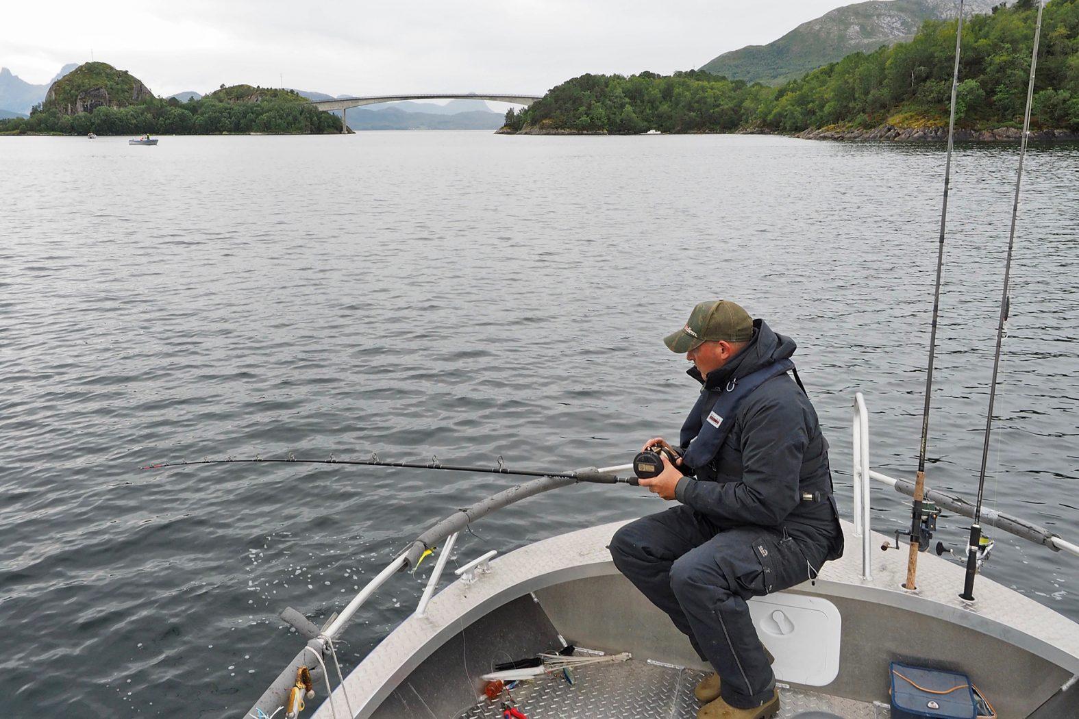 Angeln am Meløyfjord in Mittelnorwegen