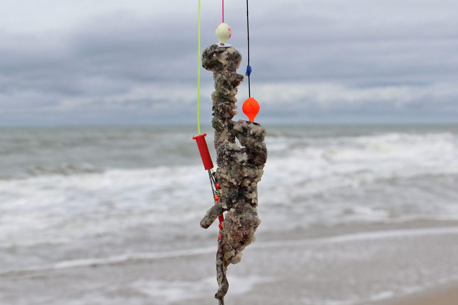 Konservierte Wattwürmer zum Brandungsangeln