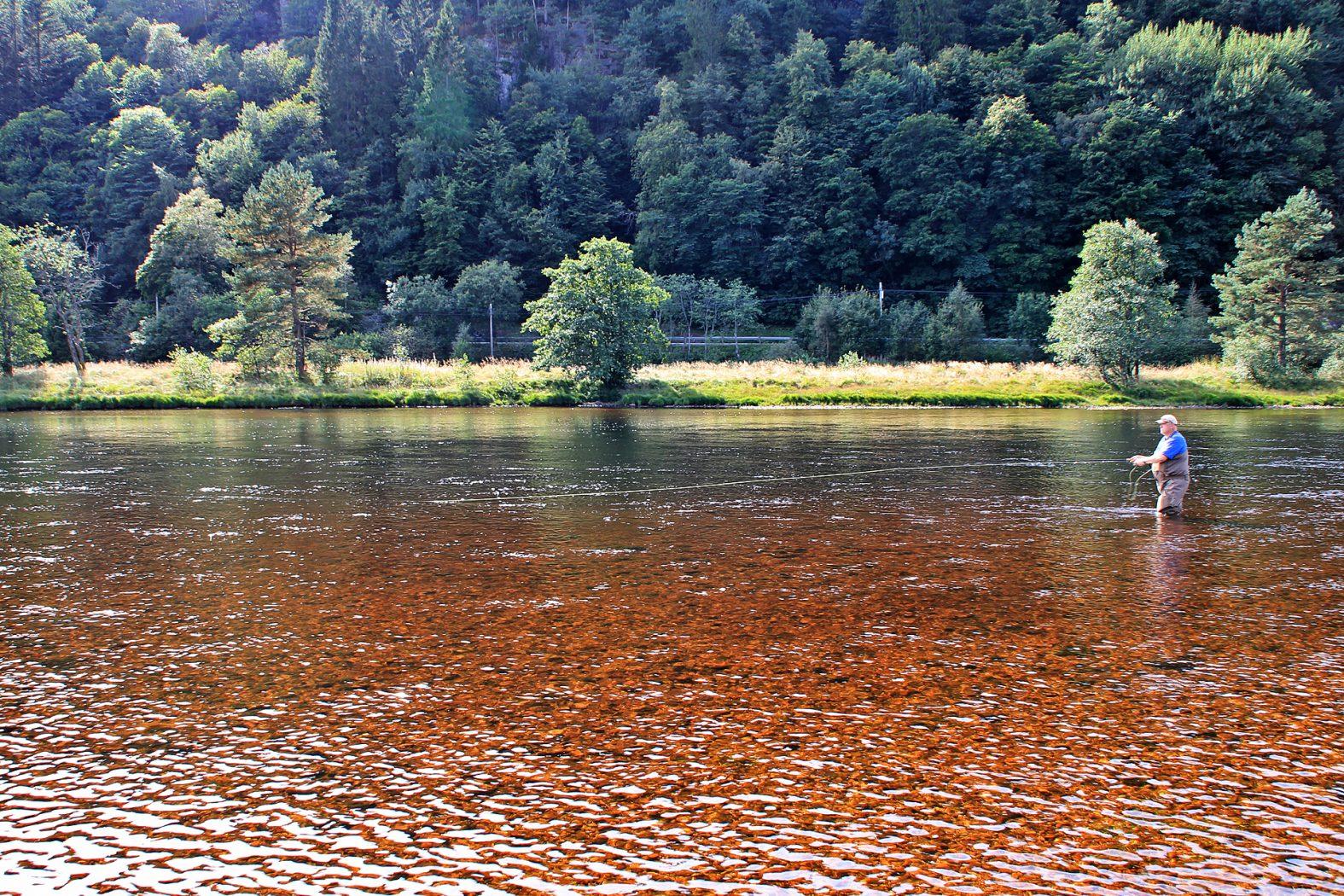 Erlaubnis zum Lachsangeln in Norwegen