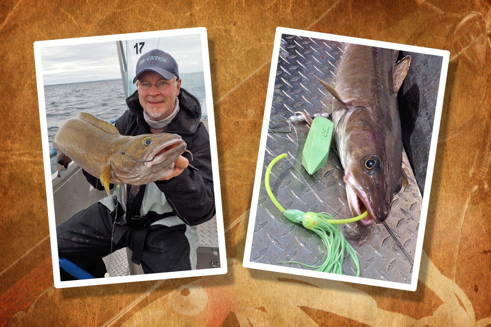 Leng und Lumb angeln in Südnorwegen