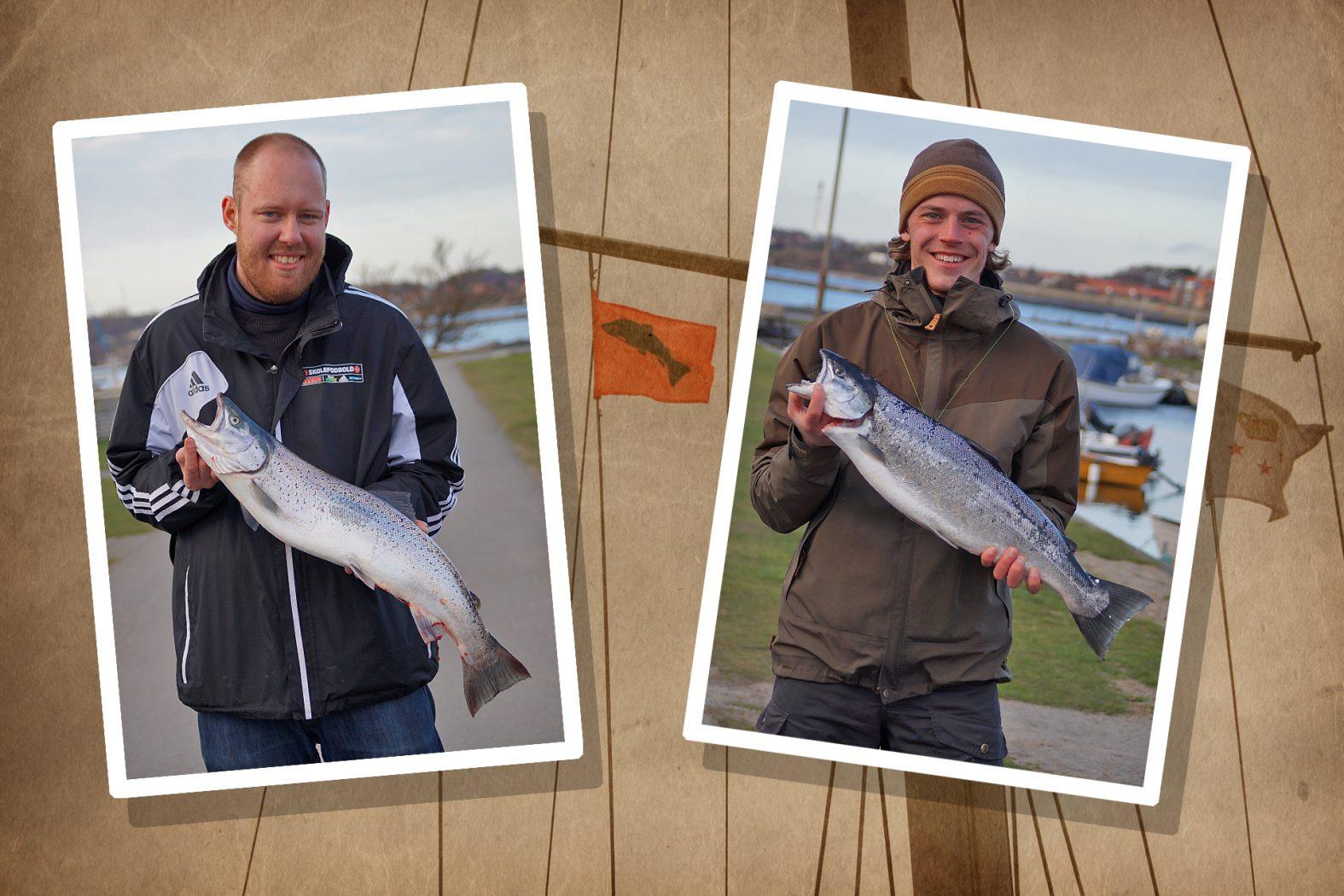 Lachs angeln auf Bornholm