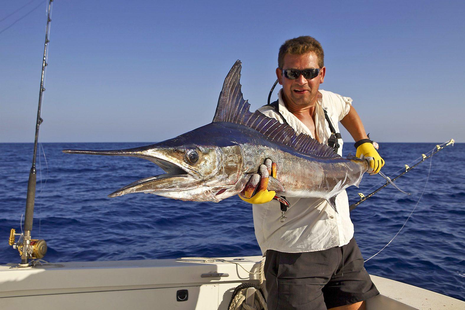 Hochseeangeln auf Speerfisch vor Mallorca und Ibiza