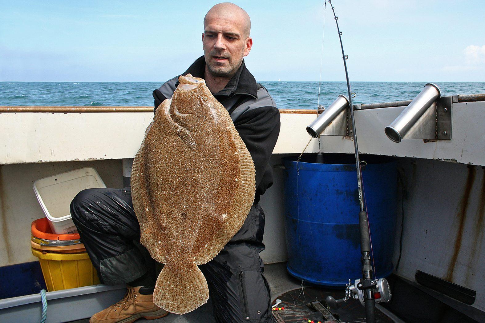 Glattbutt angeln