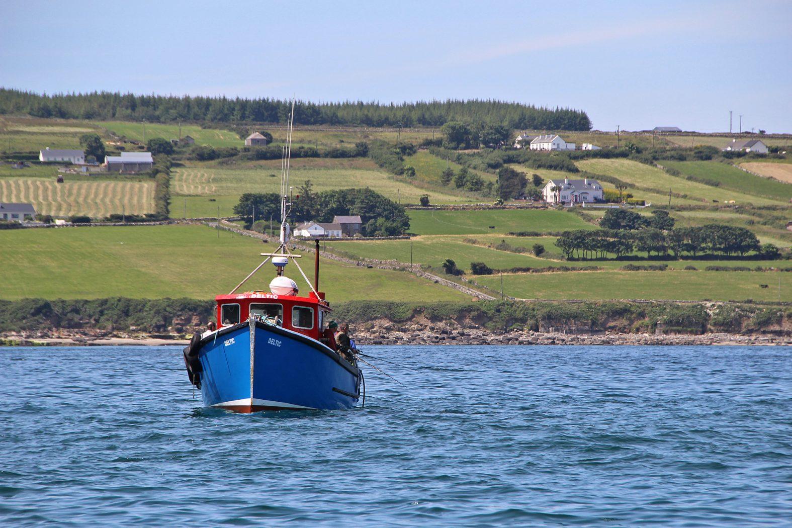Steinbutt angeln in Irland