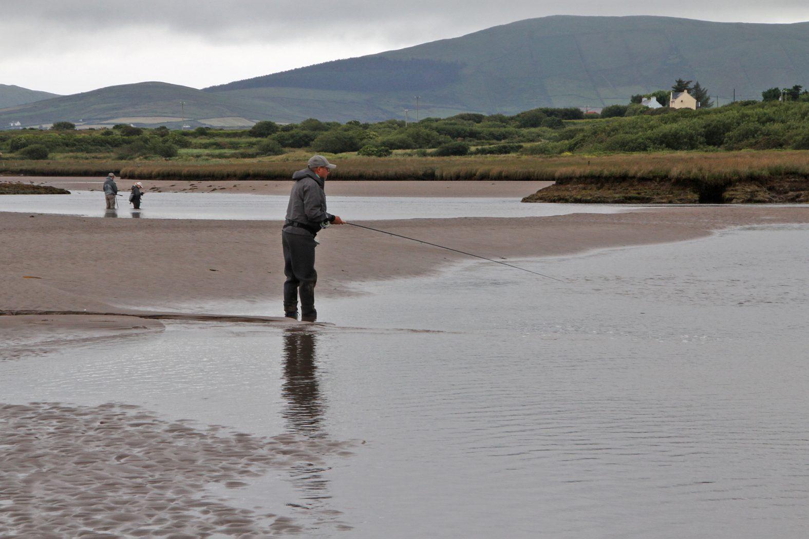 Wolfsbarsch angeln in Flussmündung