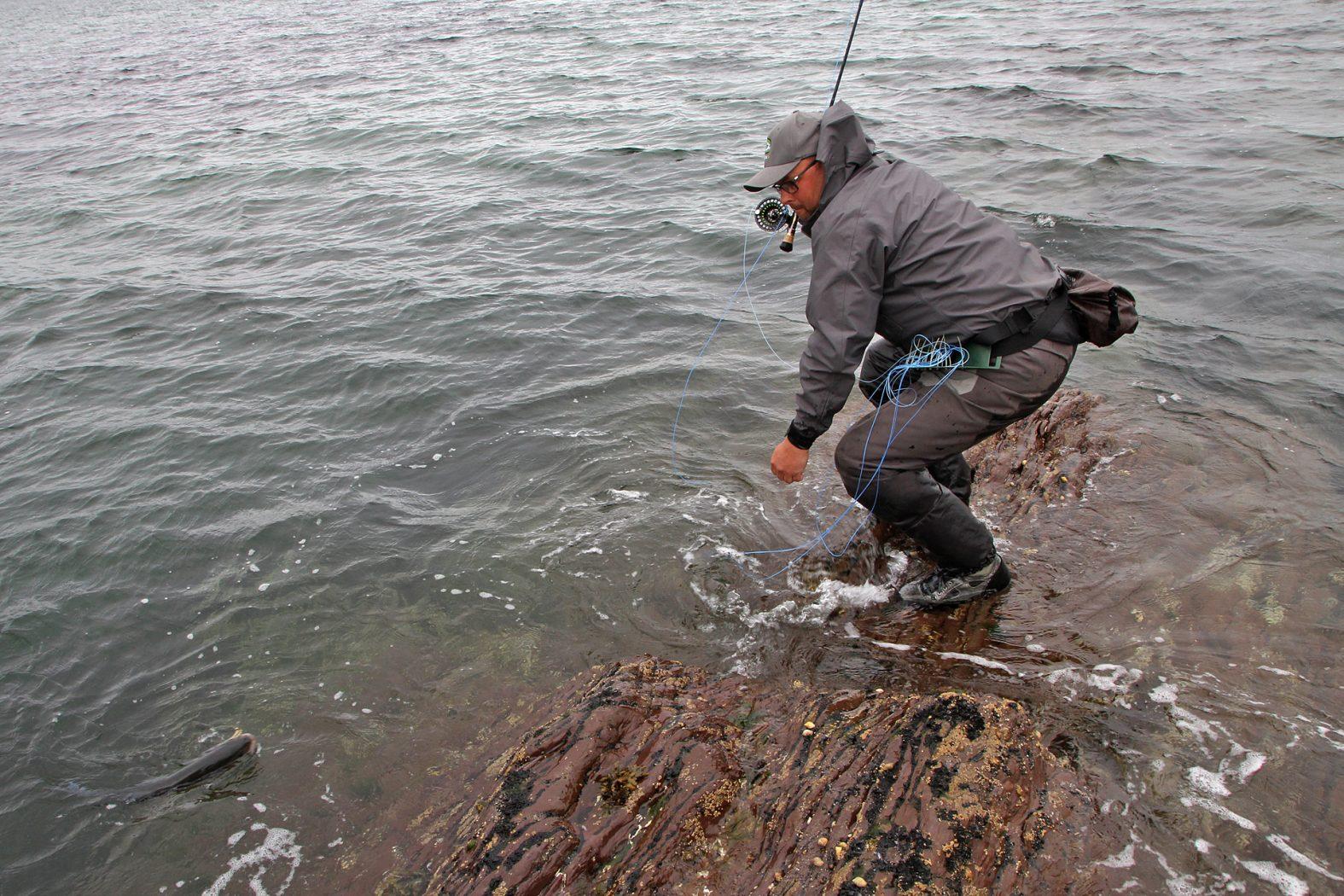 Fliegenfischen in Kerry auf Wolfsbarsch