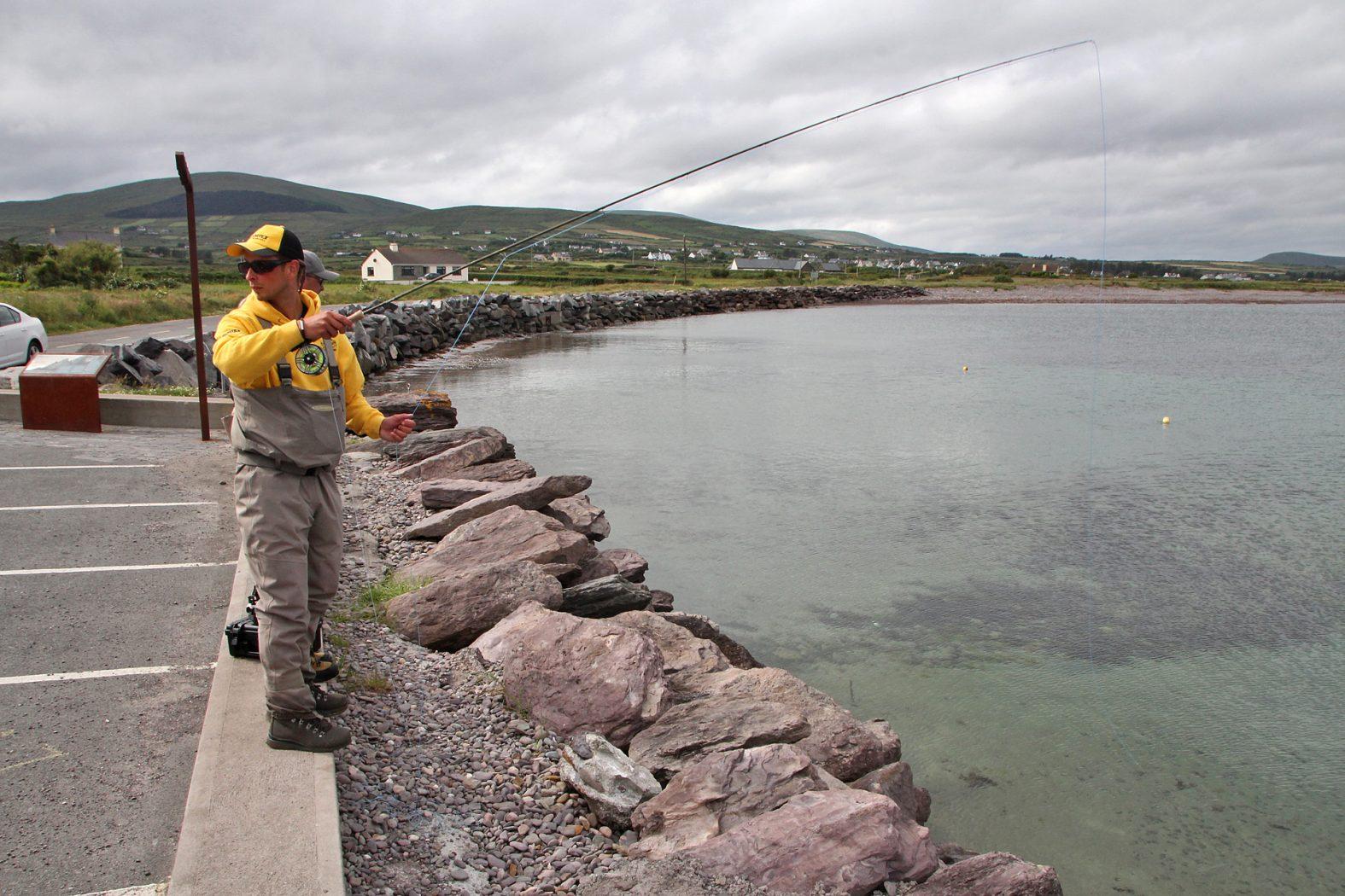 Meeräsche angeln in Irland