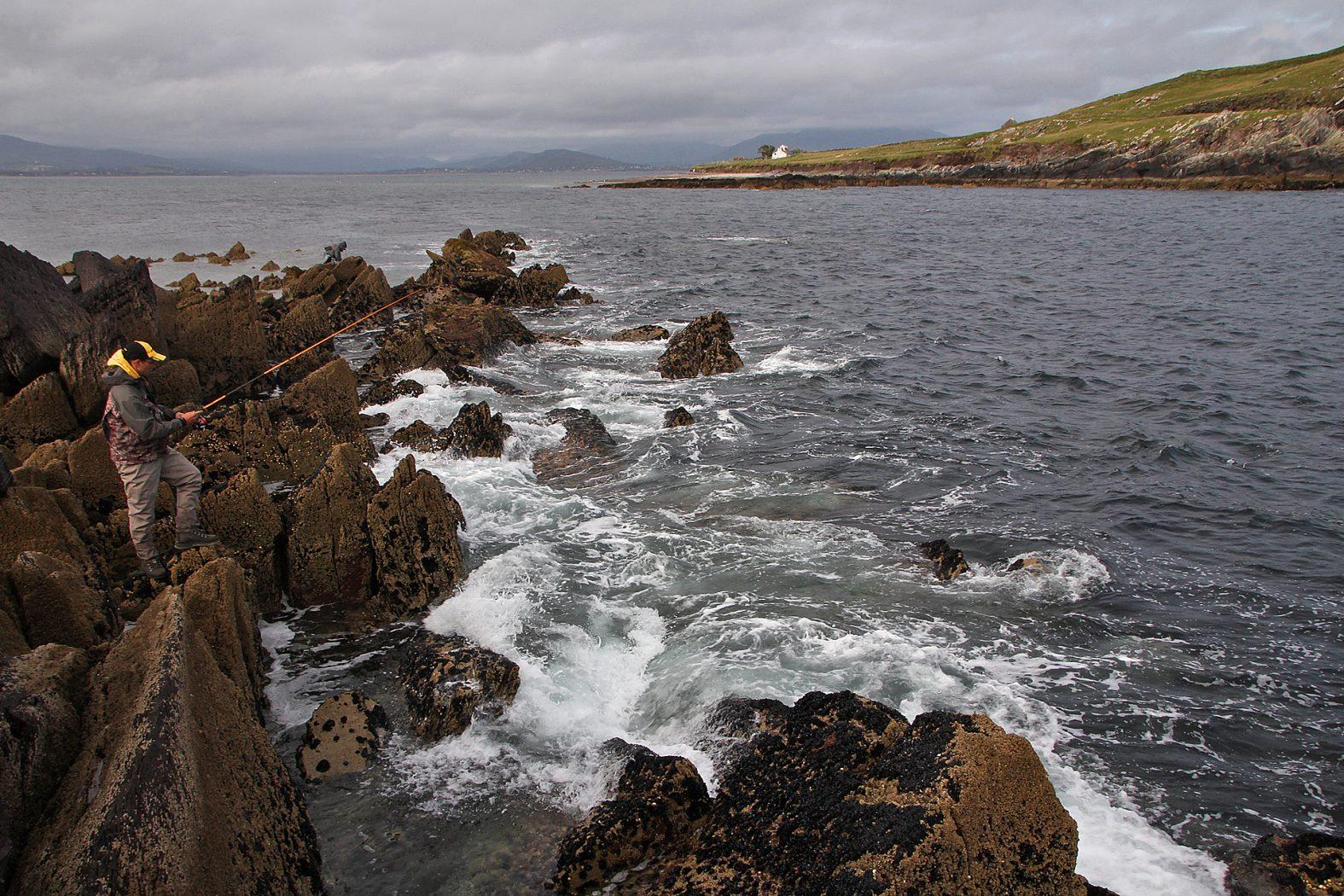 Angeln in Irland auf Pollack