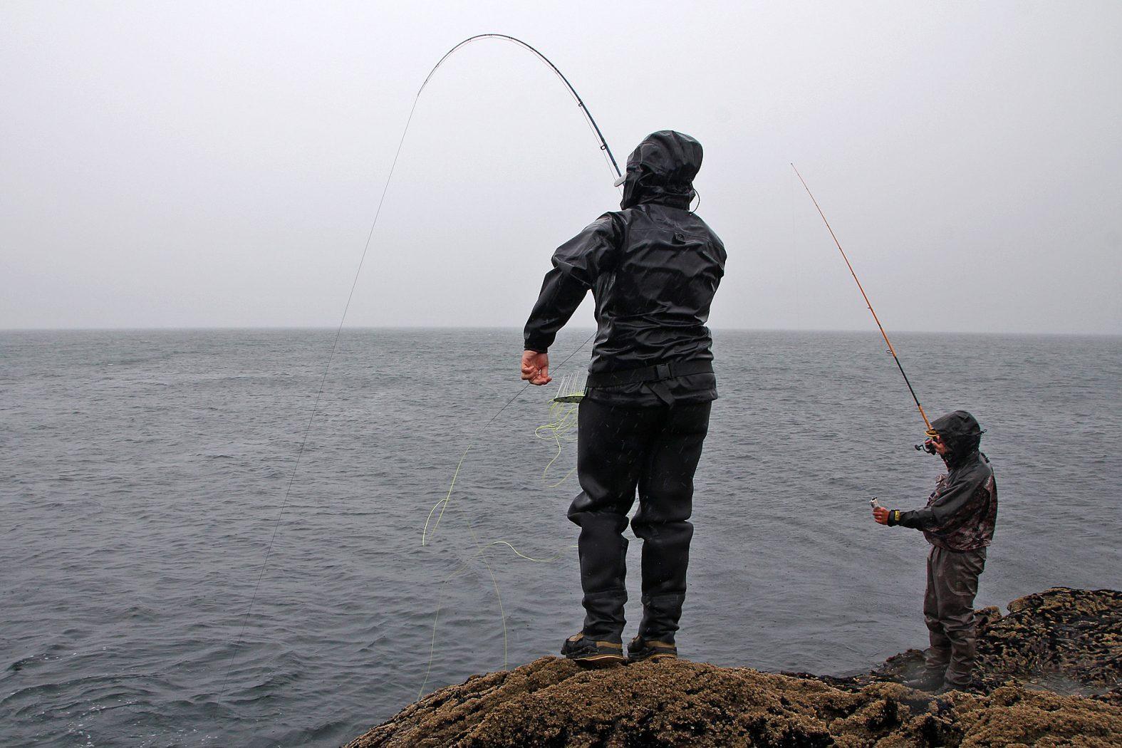 Pollack fischen mit der Fliege in Irland
