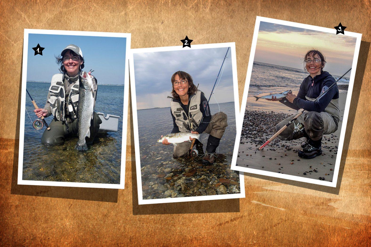 Angeln an der Nordsee auf Meeräsche und Makrele