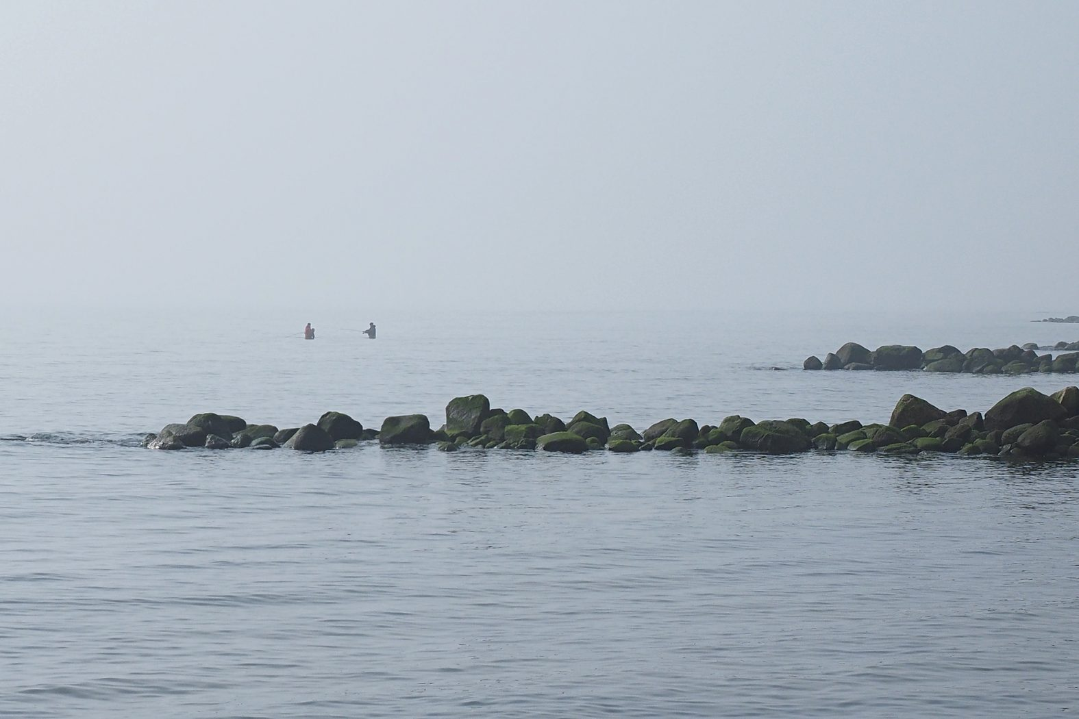 Auf Dorsch angeln vom Ufer