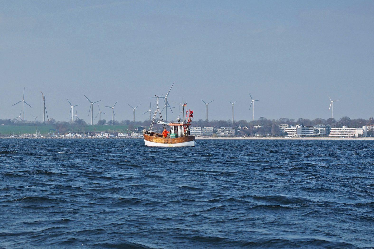 Dorsche angeln auf der Ostsee
