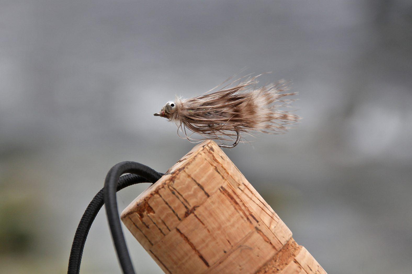 Meerforellenfliege für den Herbst