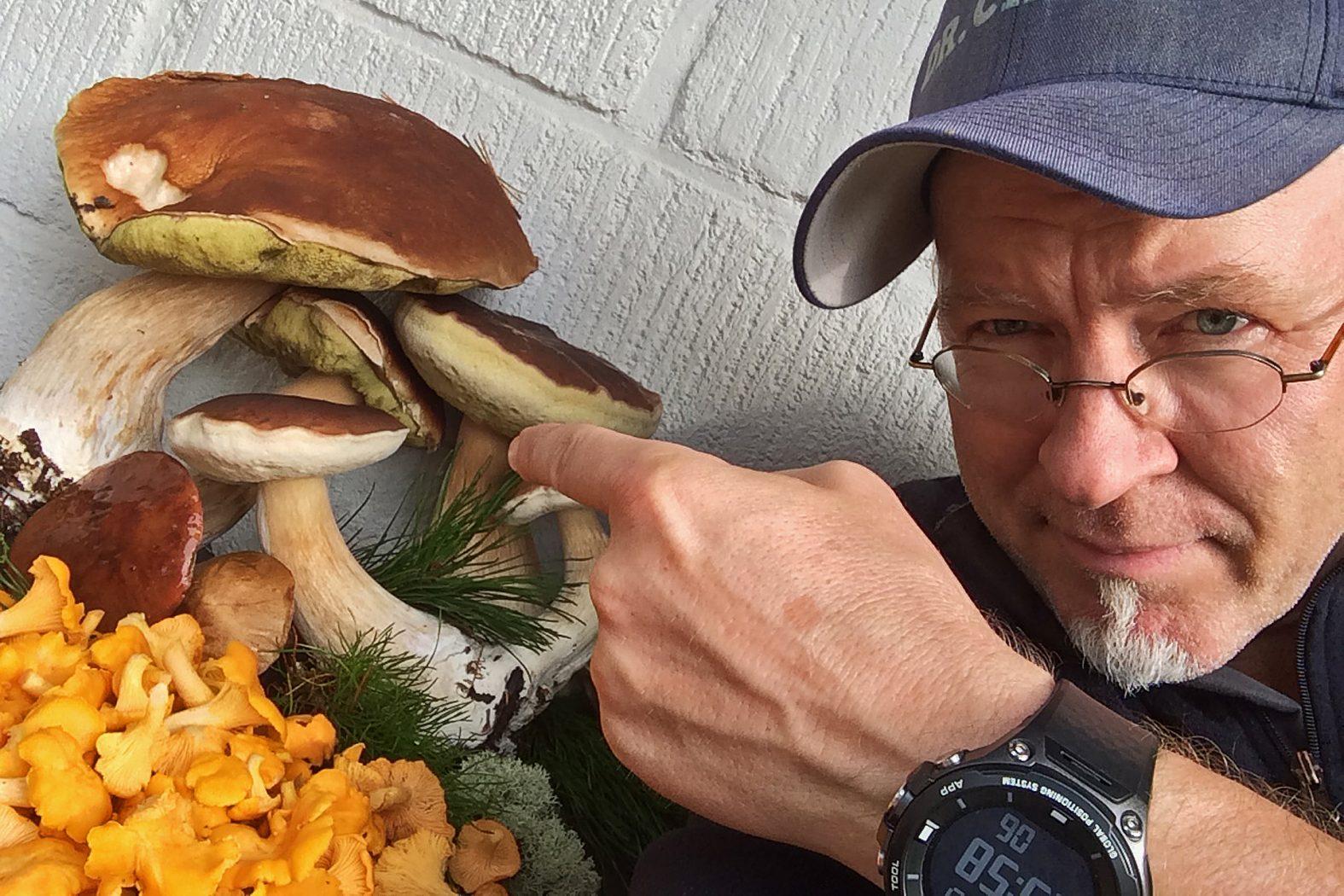 Pilze suchen in Dänemark