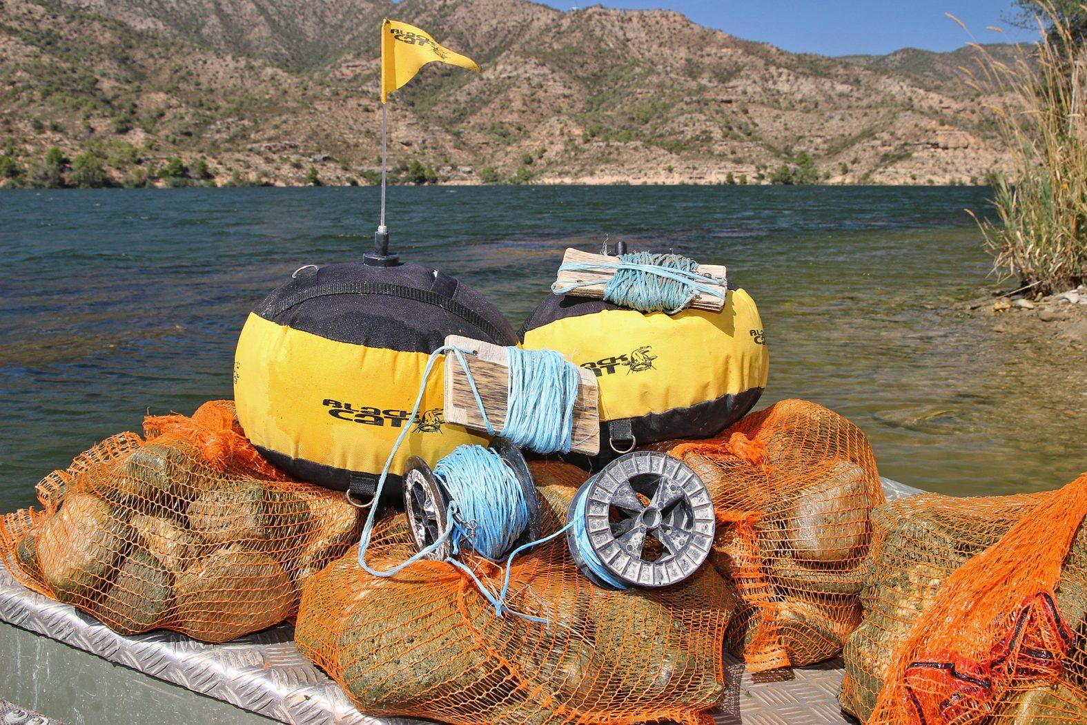 Bojenmontage beim Wallerangeln am See