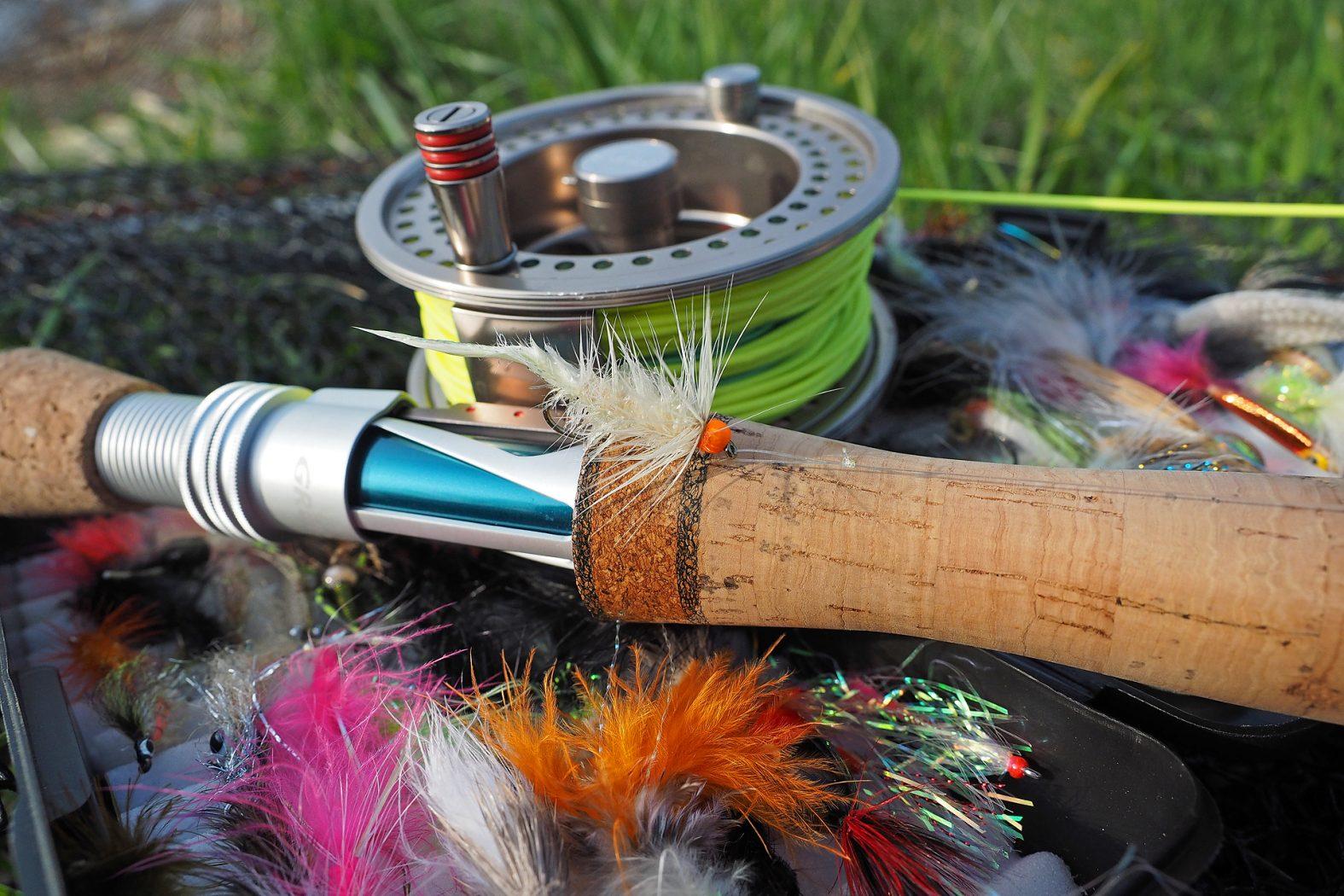 Rapfen Fliegenfischen Tipps