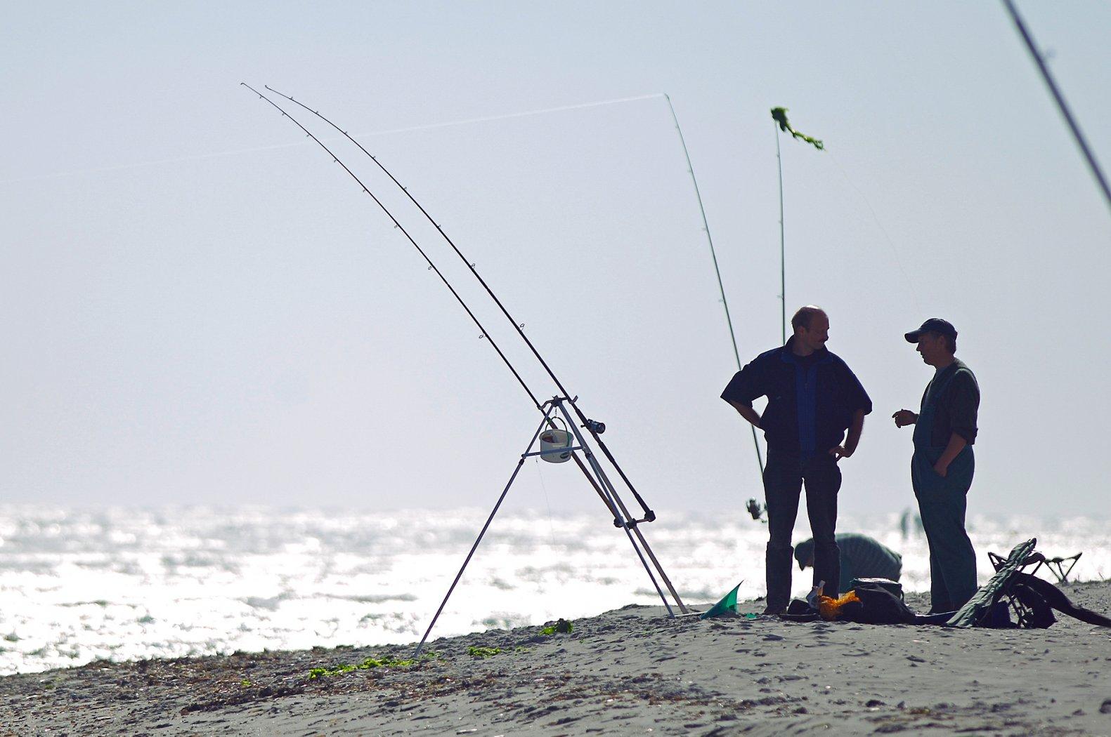 Brandungsangeln in Dänemark auf Plattfisch