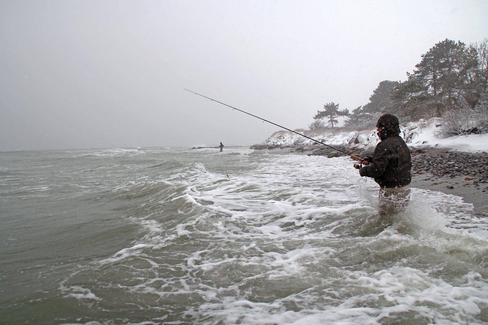 Meerforellenangeln im Winter an der Ostsee