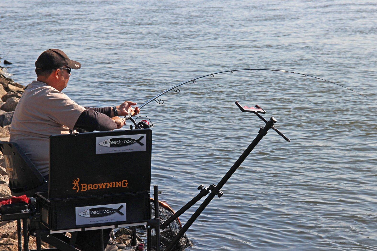 Barben angeln mit dem Window Feeder im Fluss