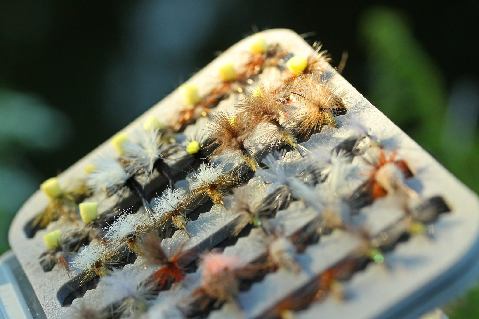Trockenfliegen für Forelle und Äsche