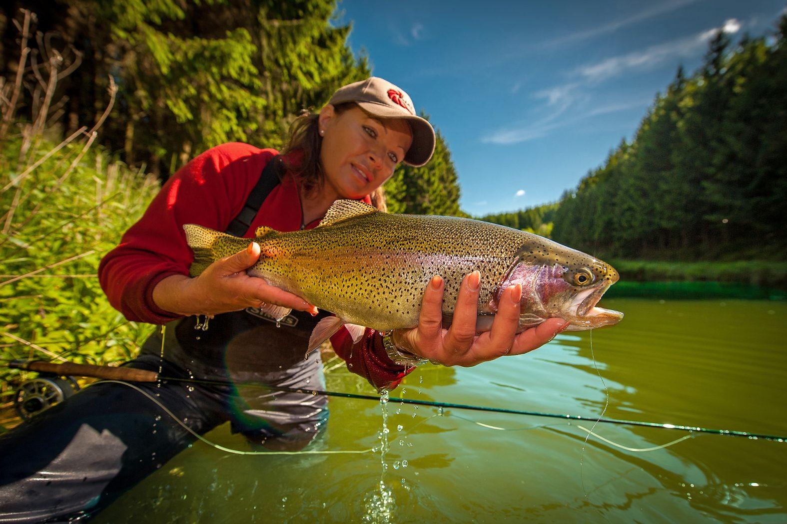 Streamer angeln auf Forellen