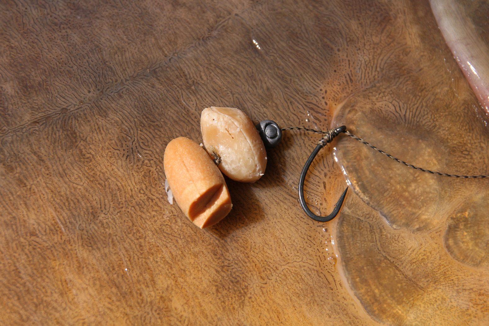 Karpfen angeln mit Erdnüssen