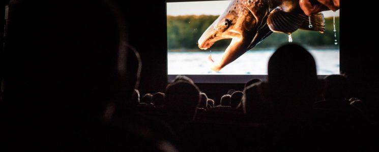 Rise Film Festival