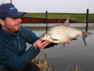 Feedern für Anfänger Feederfischen