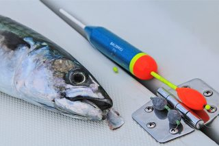 posenangeln auf makrele mit fischfetzen