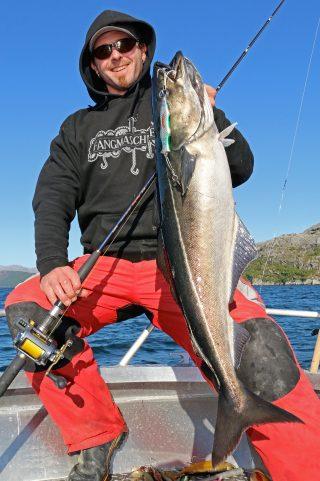 Köhler angeln in Norwegen