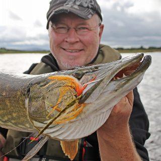 meterhecht beim fliegenfischen gefangen