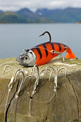 Mit Gummifisch angeln in Norwegen
