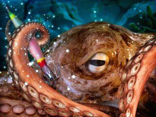 Kraken mit dem Oktopus Jig fangen