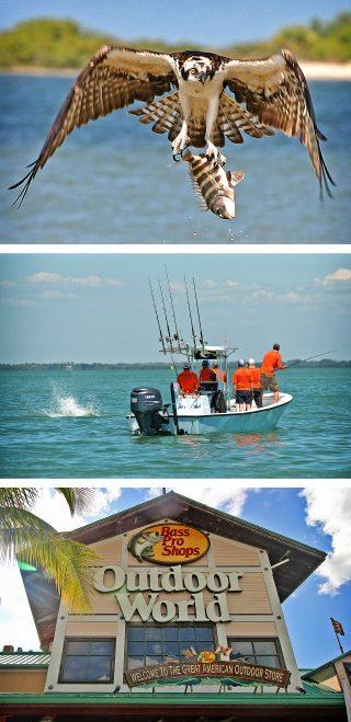 Tarpon angeln in Florida
