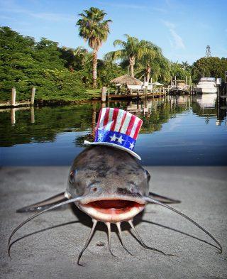 Angeln in Florida rund um Cape Coral