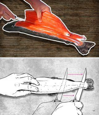 Fisch filetieren Anleitung