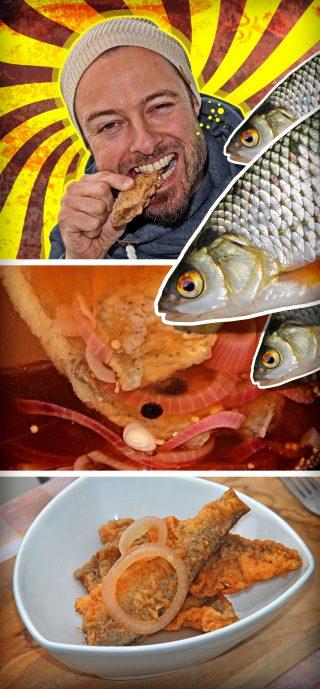 Rotaugen und andere Weißfische sauer einlegen