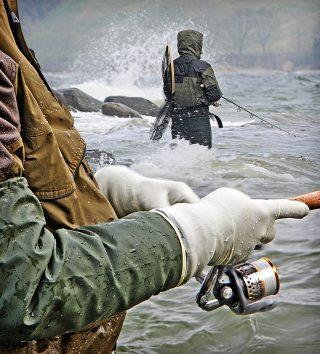 Tipps zum Angeln auf Meerforelle